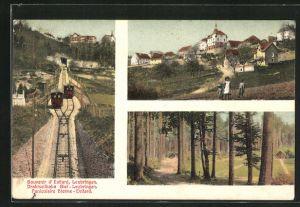 AK Evilard-Leubringen, Drahtsseilbahn Biel Leubringen, Teilansicht, Waldpartie