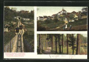 AK Evilard-Leubringen, Drahtseilbahn Biel-Leubringen, Ortspartie, Waldpartie