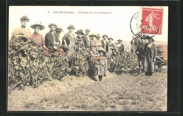 AK Les Vendanges, Groupe de Vendangeurs, Weinernte