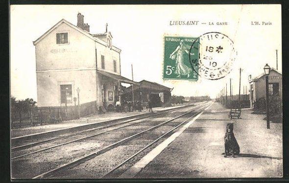AK Lieusaint, La Gare, Bahnhof mit Schienenseite, Hund 0