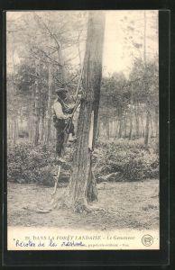 AK Dans la Forêt Landaise, Le Gemmeur, Harzernte