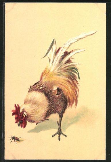 Präge-AK Neugieriger Hahn pickt nach einem Maikäfer