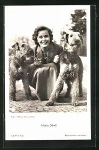 AK Schauspielerin Maria Schell mit zwei Hunden in die Kamera schauend