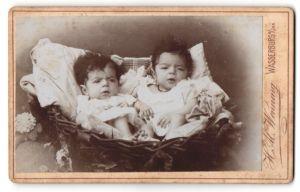 Fotografie H. Al. Wenning, Wasserburg a/Inn, Portrait Zwillinge, Säuglinge in Körbchen
