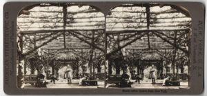 Stereo-Fotografie American Stereoscopic Co., New York, Ansicht New York City, Rustic Arbor, Laube-Pergola