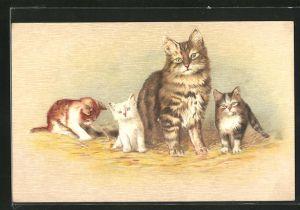 AK Getigerte Katze mit ihren Jungen