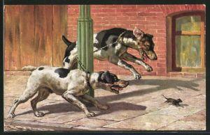 Künstler-AK Zwei Hunde jagen eine Maus