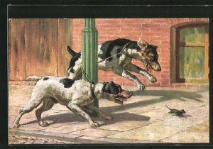 Künstler-AK Zwei Hunde auf der Mäusejagd