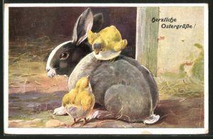 Künstler-AK Ostergruss mit Kaninchen und Küken