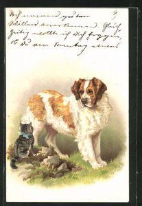 Lithographie Bernhardiner und getigerte Katze