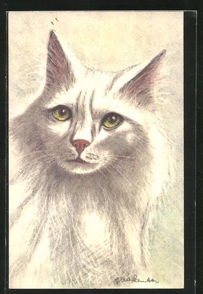 Künstler-AK Schöne weisse Katze