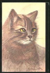 Künstler-AK Katze mit rötlichem Fell
