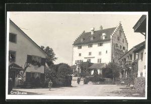 Foto-AK Greifensee, Ortspartie mit Gebäudeansicht