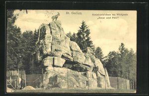 AK St. Gallen, Steinbockfelsen im Wildpark Peter und Paul