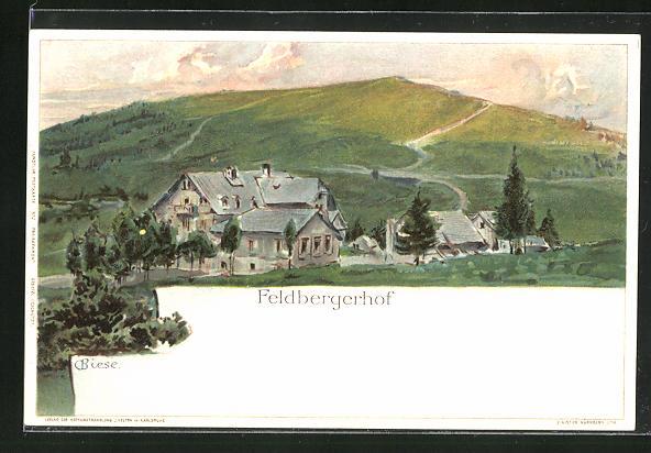 Künstler-AK Carl Biese: Feldberg, Feldbergerhof