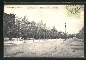 AK Lisboa, Um trecho da Avenida da Liberdade