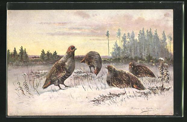 Künstler-AK M. Müller jun.: Vögel in winterlicher Landschaft
