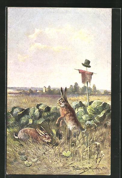 Künstler-AK M. Müller jun.: Hasen fressen sich im Kohlfeld satt
