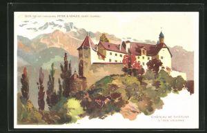 AK Rhäzuns, Chateau de Rhäzuns Ct des Grisons