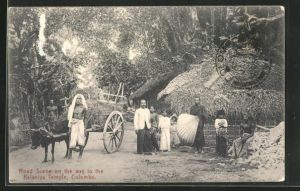 AK Colombo, Road Scene on the way to the Kelaniya Temple