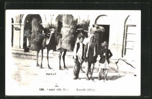 AK Karachi, Camel with Hav