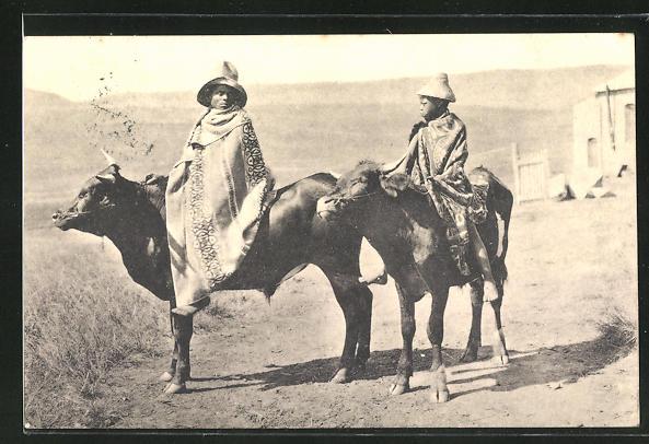 AK Zwei Afrikaner reiten auf Rindern 0