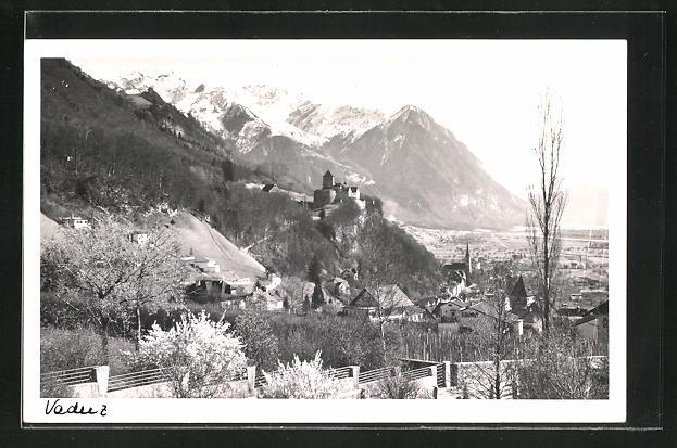 AK Vaduz, Ortsansicht mit Schloss, Alpen und Frühlingslandschaft