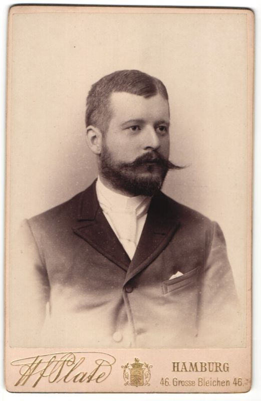 Fotografie H. F. Plate, Hamburg, Portrait Herr mit Bart in Anzug mit Krawatte