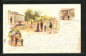 Lithographie London, Zoological Gardens, Elefant, Löwen