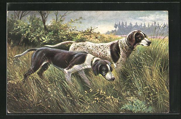 Künstler-AK Alfred Schönian: zwei Jagdhunde im hohen Gras haben Witterung