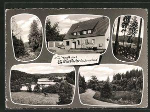 AK Bleiwäsche / Sauerland, Pension Zum Waldhaus, Waldansichten