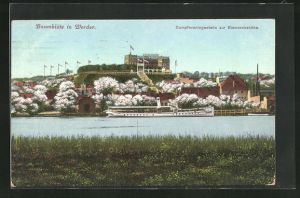 AK Werder, Dampferanlegestelle zur Bismarckshöhe während der Baumblüte