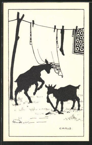 Künstler-AK Carus: Ziegen plündern die Wäscheleine