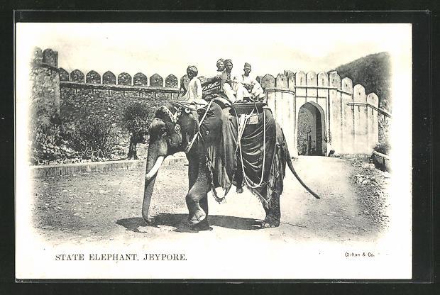 AK India, State Elephant Jeypore, Elefant mit Mahut