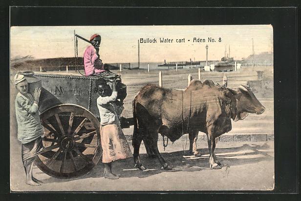 AK Aden, Bullock Water Cart, Männer mit Ochsen-Gespann