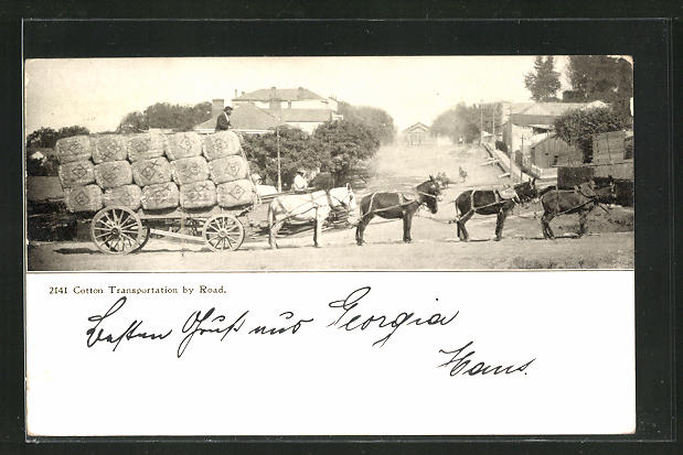AK USA, Transport von Baumwolle mit Wagen und Maultieren