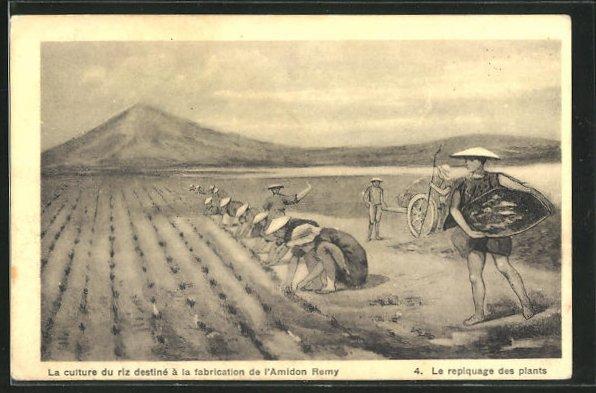 AK Asiatische Männer bei der Arbeit auf den Reisfeldern