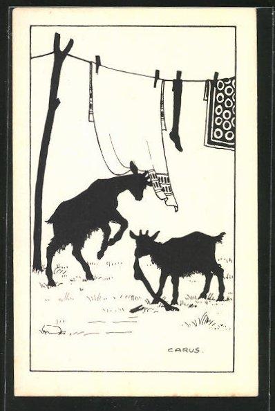 Künstler-AK Carus: Ziegen stibitzen die Wäsche von der Leine