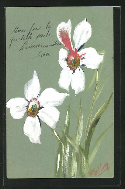 Künstler-AK Handgemalt: Zwei weisse Blumen