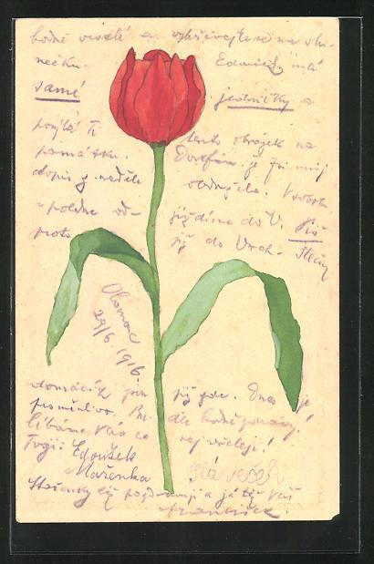 Künstler-AK Handgemalt: Rote Rose