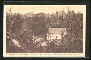 AK Wachau, Gräfl. v. Brühl`sche Marienmühle im Seifersdorfer Tale