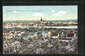 AK Werder / Havel, Panorama während der Baumblüte