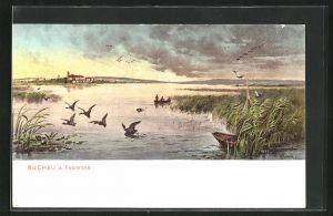 Künstler-AK Buchau a. Federsee, Panorama mit Ufer und Entenjagd