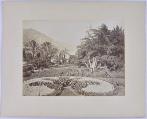 Fotografie Fotograf unbekannt, Ansicht Monaco-Monte-Carlo, Park, gepflegte Gartenanlage, Grossformat 26 x 20cm