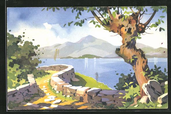 Künstler-AK S. Bonelli: Landschaftsbild