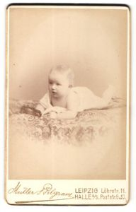 Fotografie Müller & Pilgram, Leipzig & Halle a/S, Portrait Säugling auf dem Bauch liegend