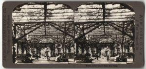 Stereo-Fotografie American Stereoscopic Co., New York, Ansicht New York, Central Park, Rustic Arbor