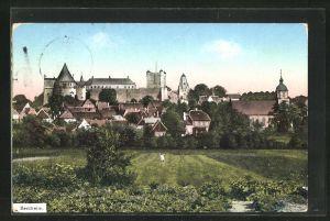 AK Bentheim, Teilansicht mit Bäumen