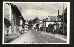 AK Montbonnot, La rue Principale, Strassenpartie