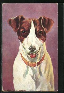 Künstler-AK Ermenegildo Carlo Donadini: Hund mit Halsband